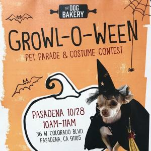 Growl-o-Ween at The Dog Bakery, Saturday, October 28, 2017 10:00 am