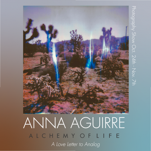 Anna Aguirre photography exhibition at Homage Pasadena